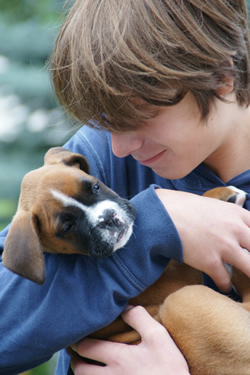 intensive puppy training classes at K9 Kingdom